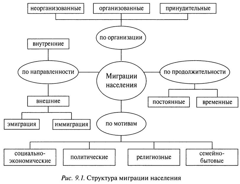 Рис. 9.1. Структура миграции населения